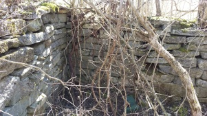 Foundation of a late 19th century homestead on the property