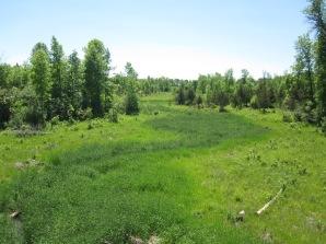 The John Clark Creek at low summer levels