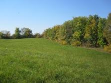 Field #4 in September