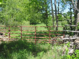 Our iconic red cattle fence