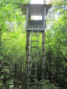 A hunting perch no longer in use