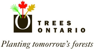 Trees-Ontario-300x159