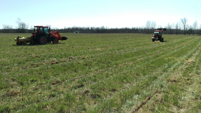 The tree planting was largely done by tractors with the auger attachment at rear