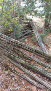 Remnants of original fence at the property line