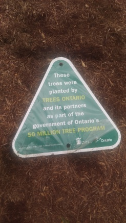 Our cooperation with Forests Ontario represented by a new sign at the farm