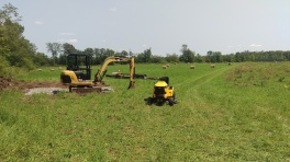 Transition time at the farm
