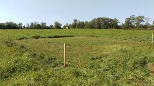 1 - Demarcated building footprint prior to excavation